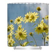 Reaching To The Sun Shower Curtain