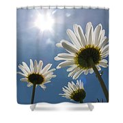 Reaching Up To Sol Shower Curtain