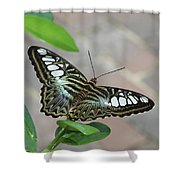 Ready For Flight Shower Curtain