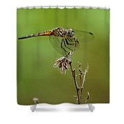 Ready For Lift-off  Shower Curtain