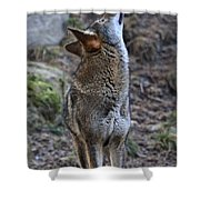 Ready To Howl Shower Curtain