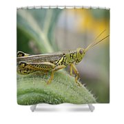 Ready To Jump...   # Shower Curtain