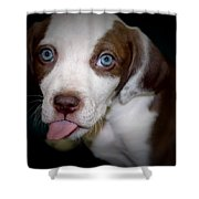 Ready To Kiss Shower Curtain
