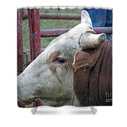 Ready To Ride Shower Curtain