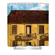 Rear View Window... Shower Curtain