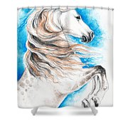 Rearing Andalusian Horse Shower Curtain