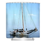 Rebecca T Ruark Shower Curtain