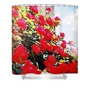 Recesky - Bright Roses Shower Curtain