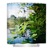 Recesky - Summer Oak Leaves Shower Curtain