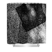Recieving Shower Curtain