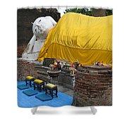 Reclining Buddha Monument Shower Curtain