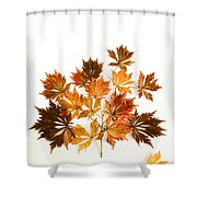 Reconstructed Full Moon Maple Shower Curtain