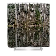 Red Alders Shower Curtain