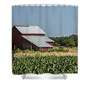 Red Amish Barn And Corn Fields Shower Curtain