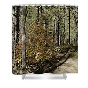 Red Among The Pines Shower Curtain