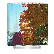 Red And Gold And Blue Shower Curtain