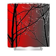 Red And Gray Shower Curtain