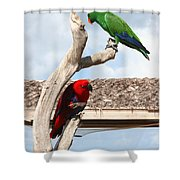 Red And Green Parrots Shower Curtain