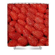 Red And Ripe Shower Curtain
