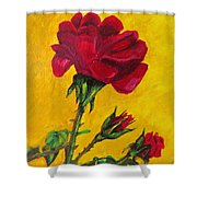 Red And Small Shower Curtain