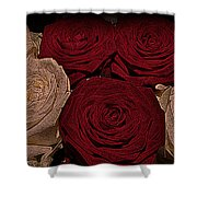 Red And White Roses Color Engraved Shower Curtain