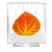 Red And Yellow Aspen Leaf 5 Shower Curtain