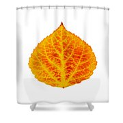 Red And Yellow Aspen Leaf 6 Shower Curtain