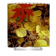Red And Yellow Shower Curtain