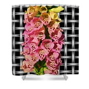 Red And Yellow Hollyhocks Shower Curtain