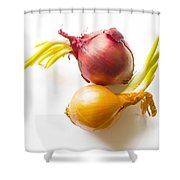 Red And Yellow Onion With Sprout Shower Curtain