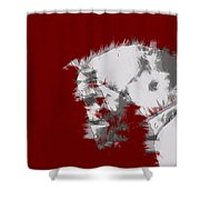 Red Andalusian Shower Curtain