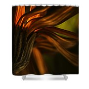 Red Autumn Blossom Detail Shower Curtain