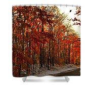 Red Autumn Road In Snow Shower Curtain
