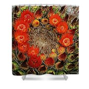 Red Barell Cactus Flowers Shower Curtain