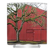 Red Barn And Green Tree In Dundee Hills Oregon Wine Country Shower Curtain