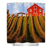 Red Barn In Autumn Vineyards Shower Curtain
