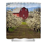 Red Barn Spring Shower Curtain by Mike  Dawson