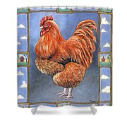 Red Baron Rooster Shower Curtain