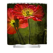 Red Beauties In The Field Shower Curtain