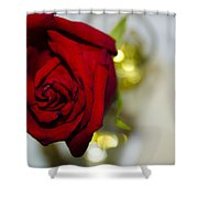 Red Beauty II Shower Curtain