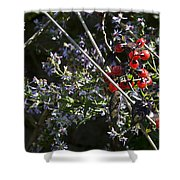 Red Berries And Violet Flowers Shower Curtain