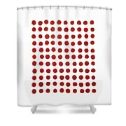 Red Berries In A Grid Shower Curtain