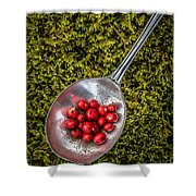 Red Berries Silver Spoon Moss Shower Curtain by Edward Fielding