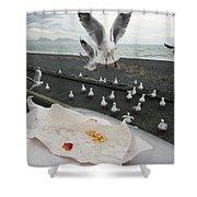 Red-billed Seagulls Shower Curtain