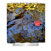 Red Blue And Gold Shower Curtain