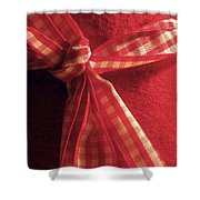 Red Bow Shower Curtain