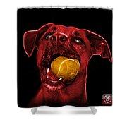 Red Boxer Mix Dog Art - 8173 - Bb Shower Curtain
