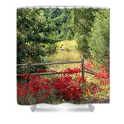 Red Bushes Shower Curtain