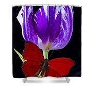 Red Butterfly And Purple Tulip Shower Curtain