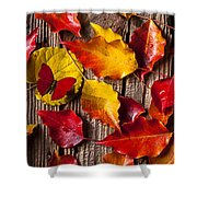 Red Butterfly In Autumn Leaves Shower Curtain